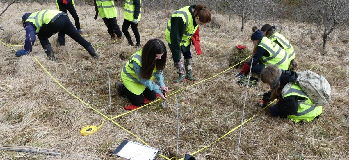 RAU environment students work towards butterfly conservation