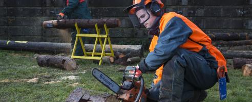 Arboriculture courses