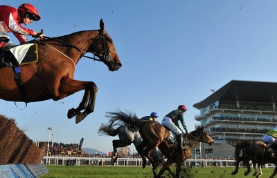 horse and rider clearing a fence at Cheltenham