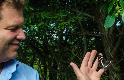 Conservationist studying a butterfly