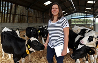 Agricultural student in calving shed