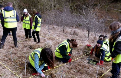 Students carrying out butterfly conservation