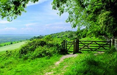 Countryside management scene