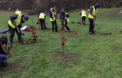 Students planting trees as part of National Tree week 2018