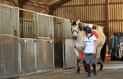 Horse being led through Fossehill stables